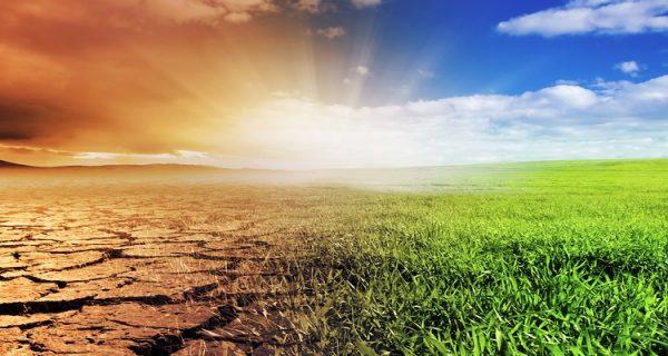Глобальное изменение климата.