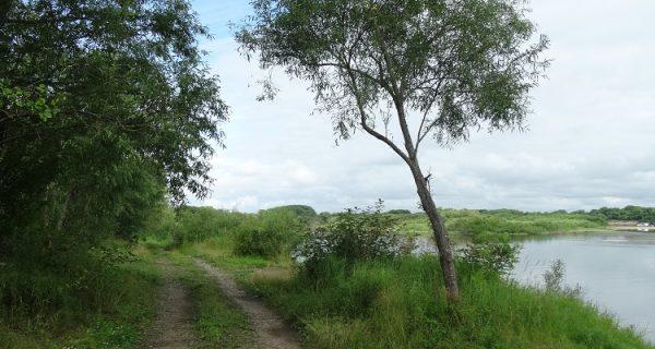 Период хорошей погоды в Приморье продолжается