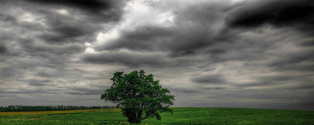 """В Приморье вернется """"июньская погода""""."""