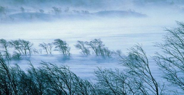 Обширный циклон будет определять погоду на Дальнем Востоке до 30 декабря