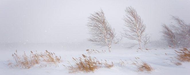 На юге Приморья пройдет снег