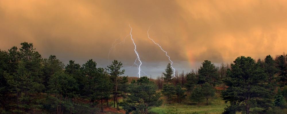 1 октября в Приморье пройдут дожди