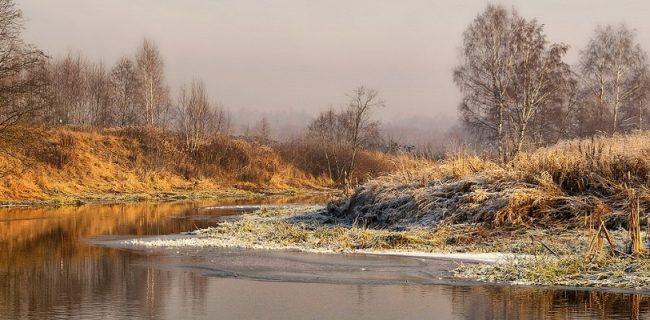 После прохладных выходных в Приморье вернется тепло