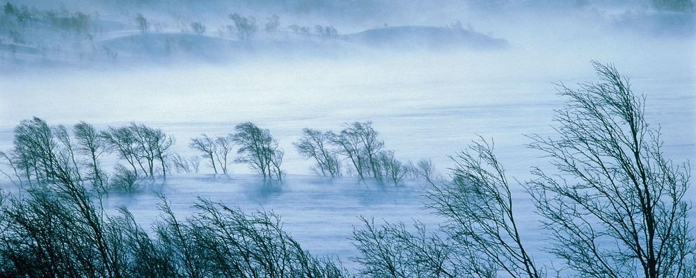 В Приморье ожидается очень холодная погода