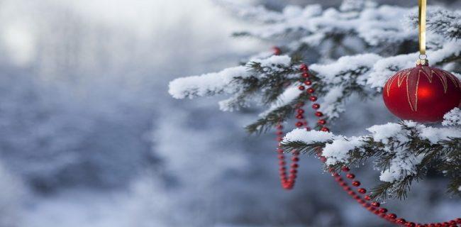 Тепло, небольшой циклон и похолодание ожидается в Приморье