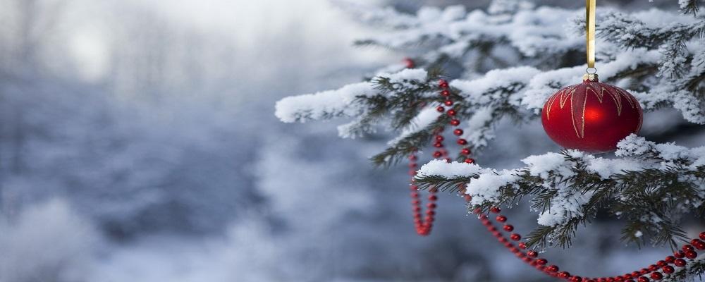 В Новогоднюю ночь на Приморье обрушится циклон