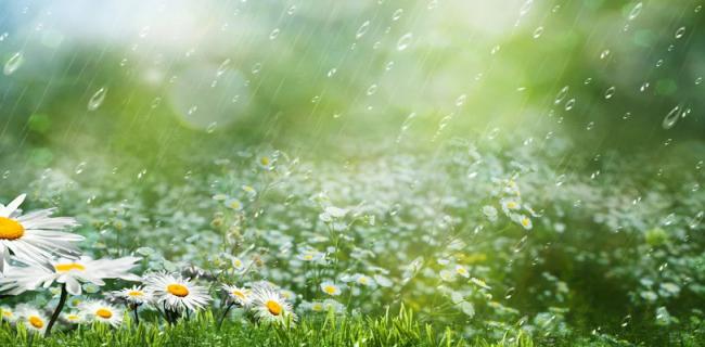 В Приморье ожидается неустойчивая, но жаркая погода