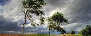 На выходные дни в Приморье ожидается хорошая погода