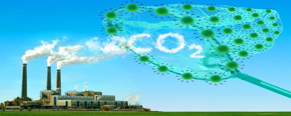 Может ли удаление углерода из атмосферы спасти нас от климатической катастрофы?
