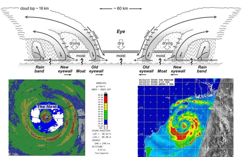 Строение и особенности тропических циклонов