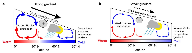 Потепление в Арктике идет в два раза быстрее, чем на остальной планете