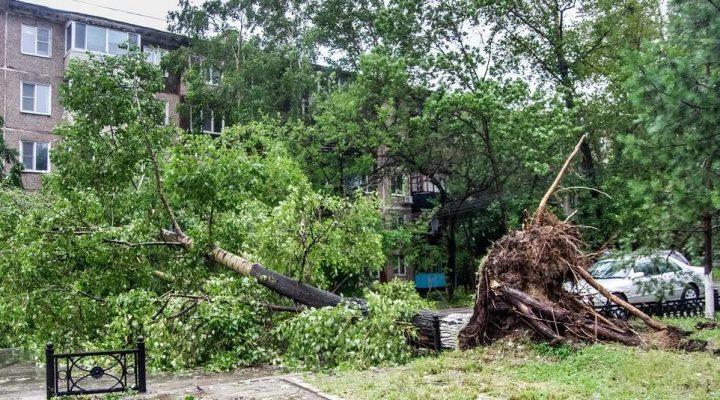 "4 года назад на Дальний Восток обрушился тайфун ""Чан-Хом"""