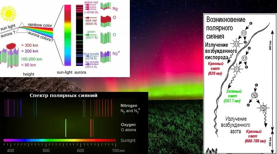 спектр кислорода фото середине цветка