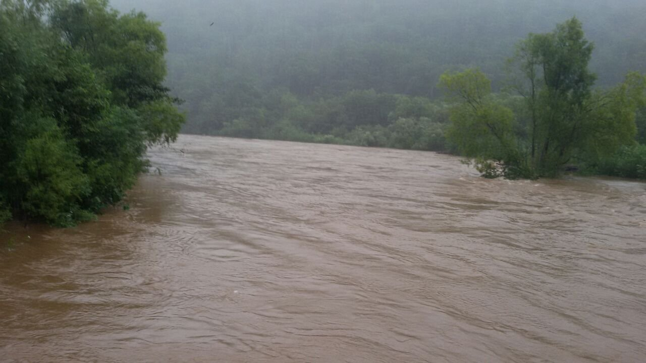 одна фото после наводнения в приморском крае образом